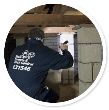 Pest Inspection Wollongong